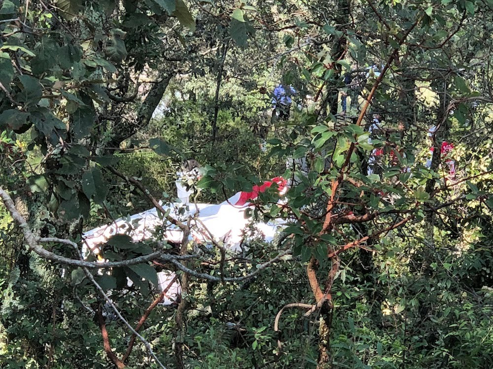 Accidentes de Aeronaves (Civiles) Noticias,comentarios,fotos,videos.  - Página 13 Cayo-avioneta-en-bosque-de-la-cruz-de-san-bartolo-en-amealco-7