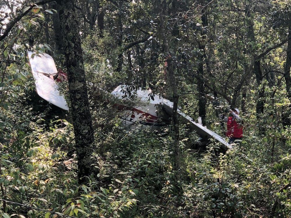 Accidentes de Aeronaves (Civiles) Noticias,comentarios,fotos,videos.  - Página 13 Cayo-avioneta-en-bosque-de-la-cruz-de-san-bartolo-en-amealco8